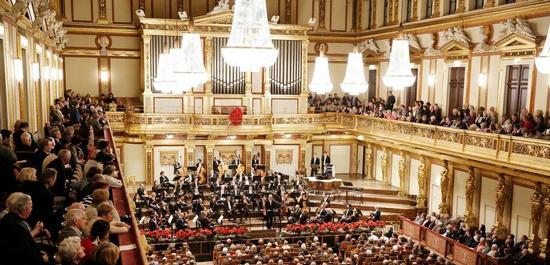 Neujahrskonzert mit dem Tonkünstler-Orchester im Wiener Musikverein, Copyright: Dieter Nagl