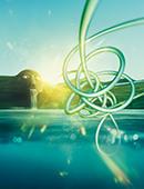 Logo Musik im Riesen