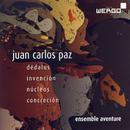 Details zu Paz, Juan Carlos: Dedalus
