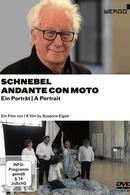 Details zu Andante con moto: Dieter Schnebel - ein Portr�t