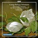 Konzerte für mehrere Instrumente & Orchester Vol.4