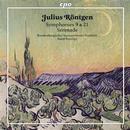 Röntgen, Julius: Symphonien Nr. 9 & 21
