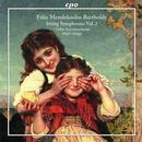 Streichersymphonien Vol.2