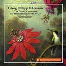 Konzerte für mehrere Instrumente & Orchester Vol.5