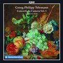 Concerti da Camera TWV 43 Vol.1