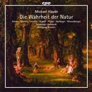 Haydn, Michael: Die Wahrheit der Natur: Salzburger Hofmusik, Wolfgang Brunner