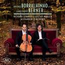Strauss, Mahler, Zemlinsky: Sonate in F-Dur, Lieder eines fahrenden Gesellen: Bruno Borralhinho, Christoph Berner