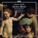 Seelen-Music: Werke von Johann Theile, Gregor Zuber, Christian Flor