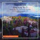 Alfven, Hugo: Complete Symphonies Vol.2: Deutsches Symphonie-Orchester Berlin, Lukasz Borowicz