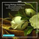 Konzerte für mehrere Instrumente & Orchester Vol.6