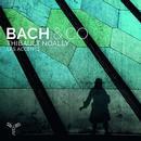 Details zu Bach & Co.: Les accents, Thibault Noally