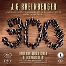 Rheinberger, Josef: Sinfonisches Tongemälde op.10: Sinfonieorchester Liechtenstein, Florian Krumpöck