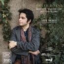 Details zu Werke von Bach, Beethoven, Schönberg: Arash Rokni, Klavier