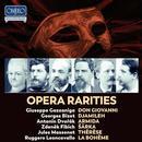 Details zu Opera Rarities: Opern von Gazzaniga, Bizet, Dvorak, Fibich, Massenet, Leoncavallo