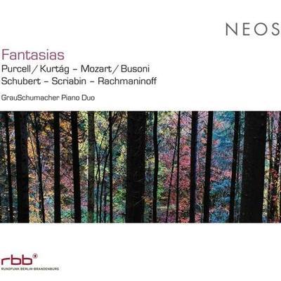 Details zu Fantasias: Werke für Klavier vierhändig von Schubert, Rachmaninoff u.a.